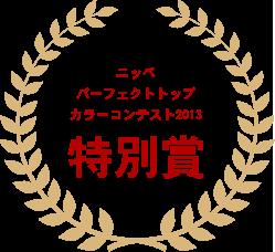 ニッペパーフェクトトップカラーコンテスト2013 特別賞