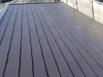 棟・屋根上塗り後